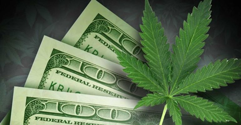 Curious How You Can Cash In with Cannabis, CBD or Medical Marijuana